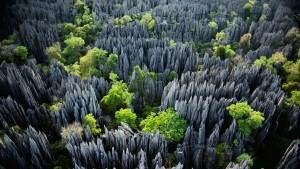BemarahaNP_Madagascar