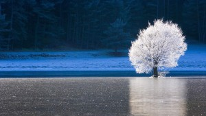CailleFrozenLake_France_1366x768