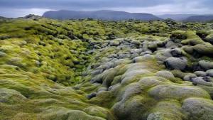 EldraunLavaFields_Iceland
