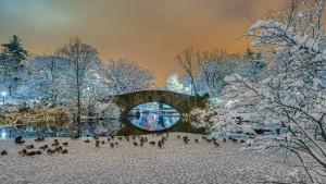 GapstowBridge_WinterCentralParkUSA_1920x1080